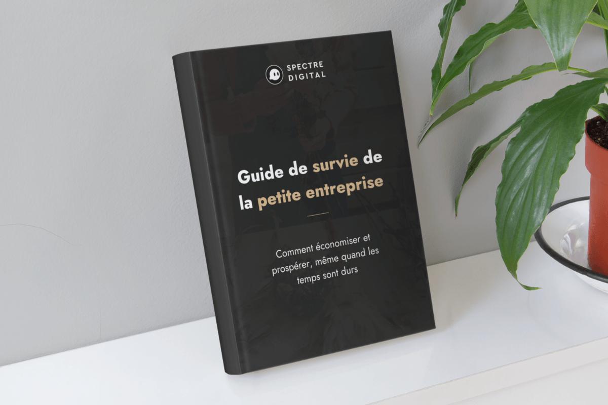 guide de survie de la petit entreprise
